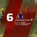 3ème victoire de Feeling de Sivola